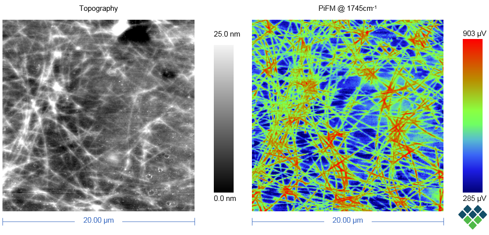 Topogaphy and PiFM image of buried silver nanowire in conductive layer