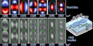 The First 7 Resonant Modes in a Single Elliptical Hexagonal Boron Nitride Optical Nano-dipole Antenna Arm