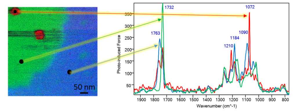FTIR spectra of the PLA and ACM components in bioplastic nanocomposite