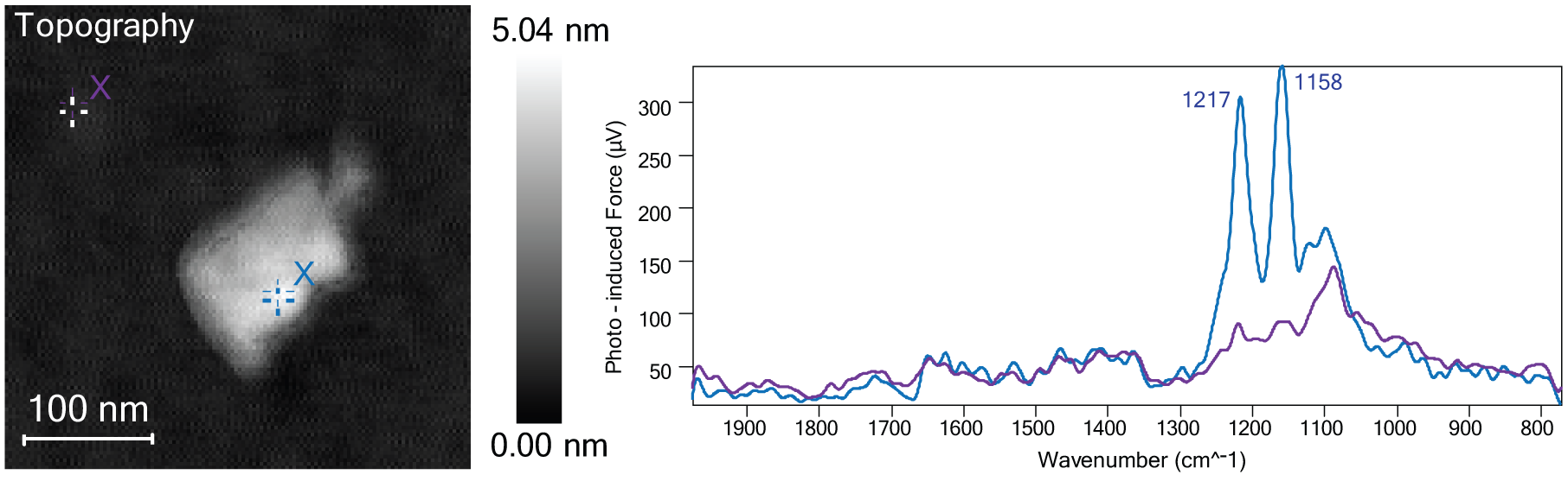 Image of nano IR (FTIR) spectra taken on PTFE nano particle