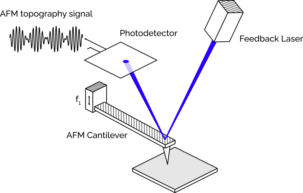 AFM cantilever and feedback laser