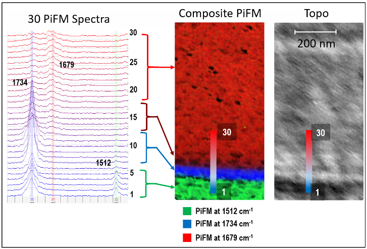 Fig 2 - Cross-sectional IR PiFM Analysis - App Notes on PiFM