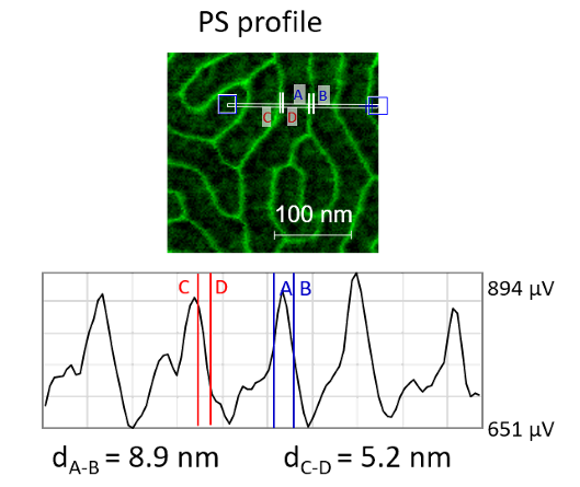 Fig 3b - Study of Organic-Inorganic Composite via PiFM - App Notes on PiFM
