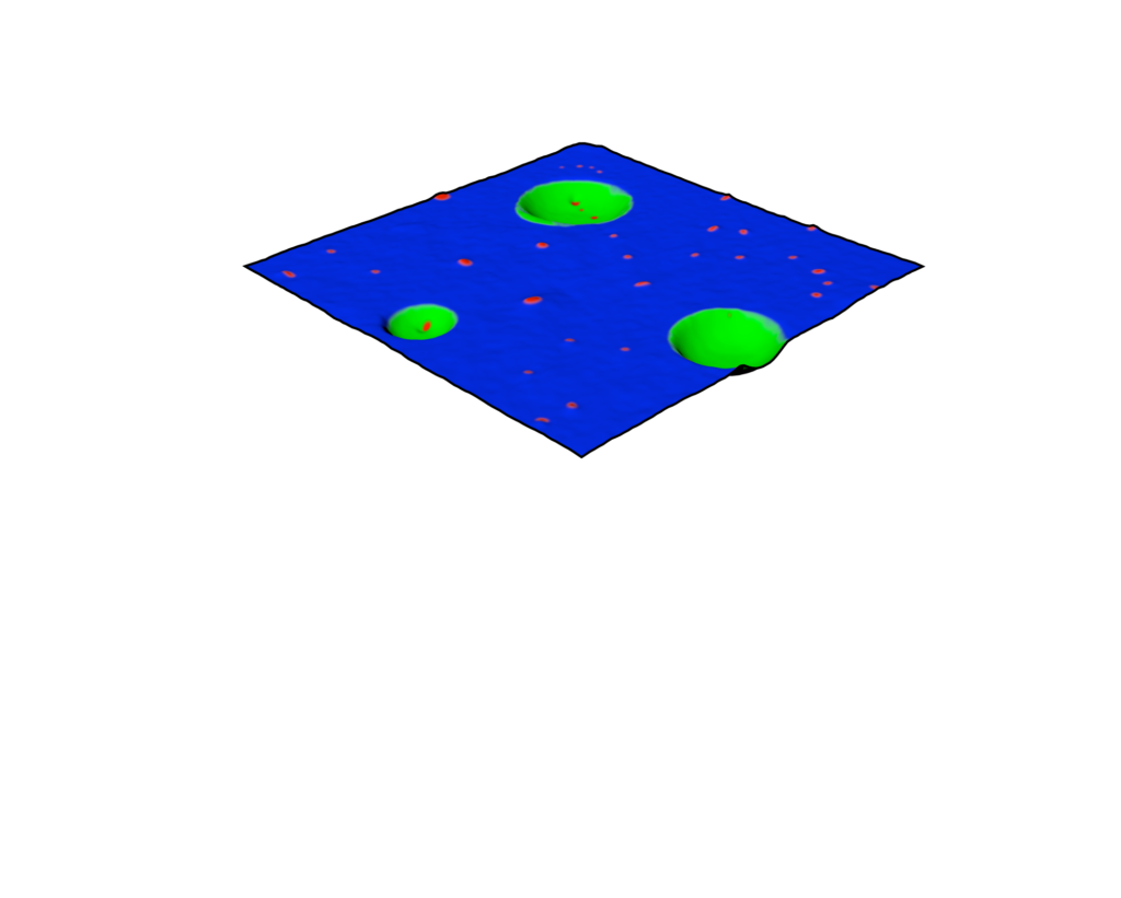 PiFM combined nanoscale chemical absorbption maps 3d render